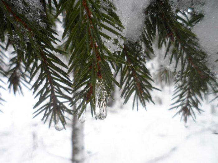 Почти зима