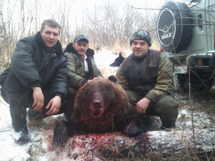 Медведь 28.11.13