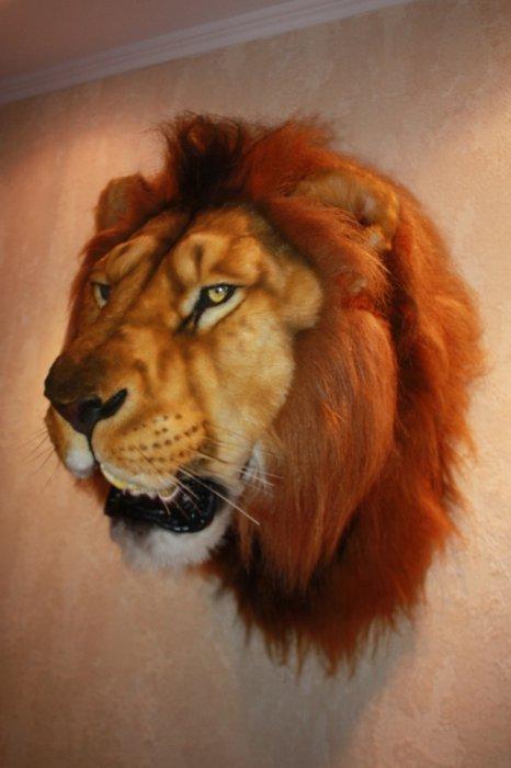 Муляж Морды льва