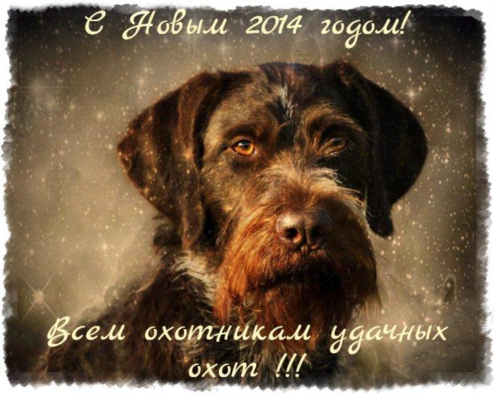 Всех любителей охоты с собаками С Новым годом!!!