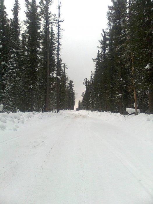 Зима в лесу...