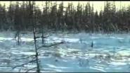 Охота на северного оленя зимой