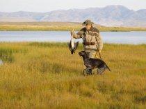 у границ Монголии