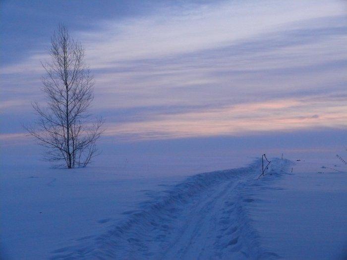 Лыжня в небо