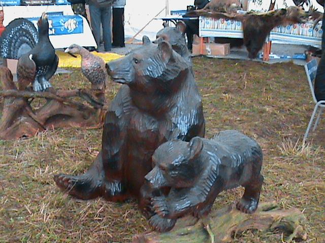 Медведи-соседи.