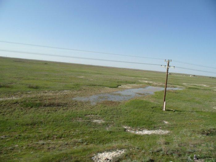 3 мая 2014 Юг Казахстана