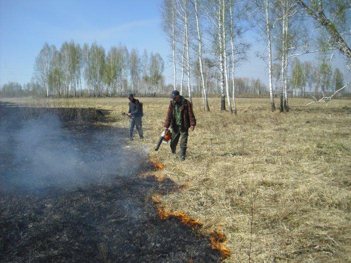 Сколько труда,затрат надо для этого,чтобы не пострадал лес!