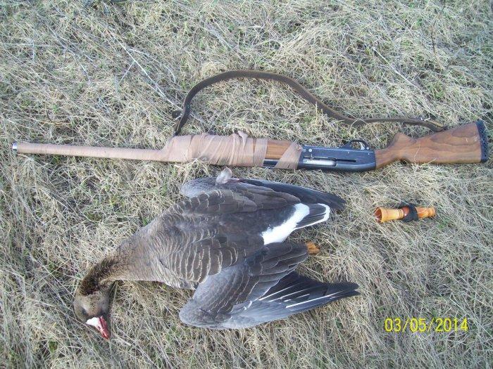 Охота на гусей