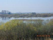 Спасское озеро.