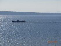 ...Издалека долго, течёт река - Волга...