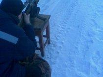 пристрелка иж-94