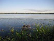 Прогулка на мое озеро.