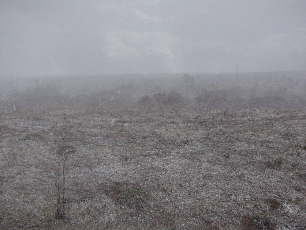 24 апреля 2014 г. Капризы погоды.