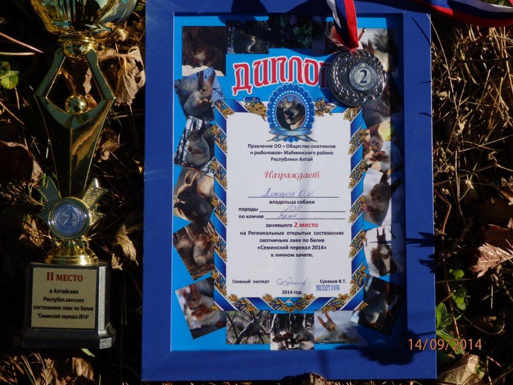 Второе место на состязаниях по Белке Симинский перевал 2014г