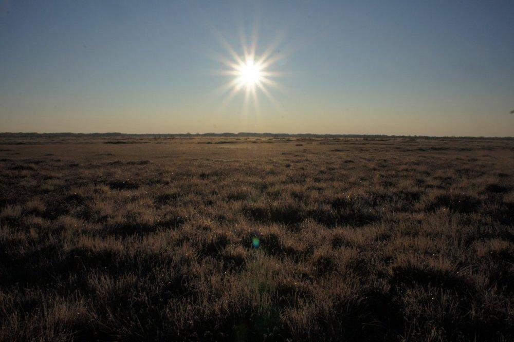 холодное солнце сентября