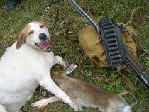 Счатлива собака - счастлив охотник!