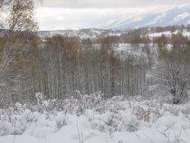 Первый снег. Тигирекский хребет.