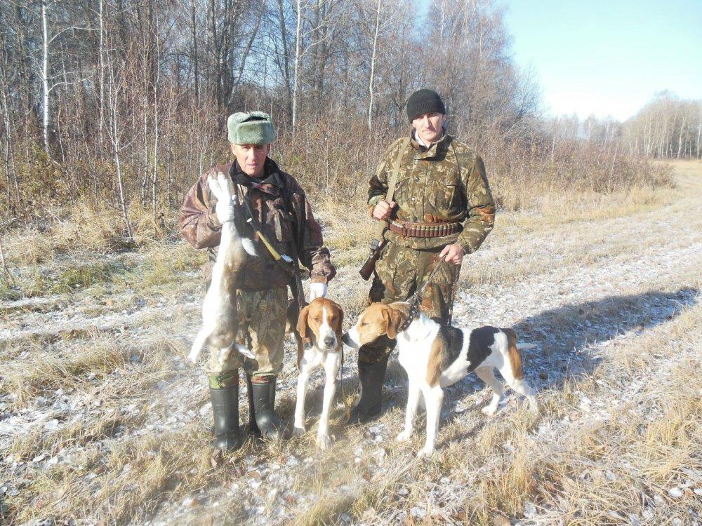 охота 2014