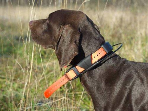 Garmin Astro – туристический навигатор с возможностью отслеживания собак