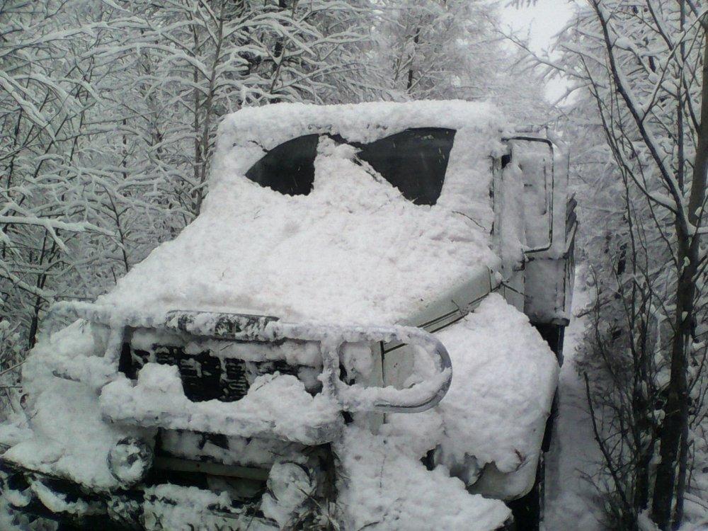 первый снег 10 10 2014