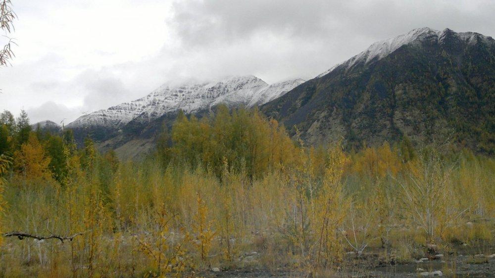 Короткая Северная осень