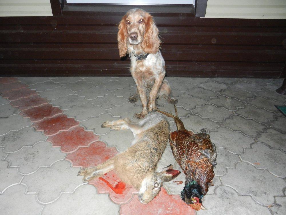 Рошель, знакомство с Кубанской дичью