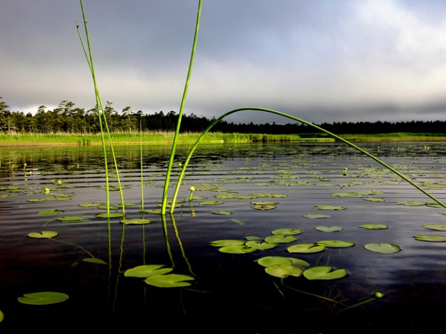 озеро Серебрянное.Кунашир