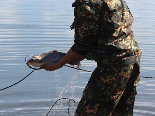 Рыбалка на Алдано-Учурском хребте (Якутия)