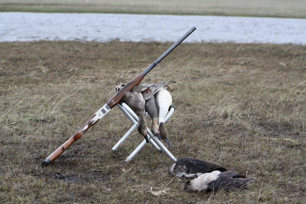 Смешные картинки открытие весенней охоты, открытки поздравления днем