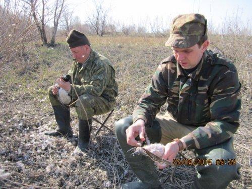 Проза охоты.