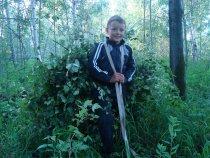 Забота о наших лесных братьях.