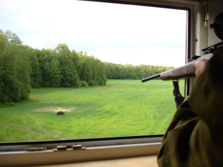 Охота на кабана: боеприпасы