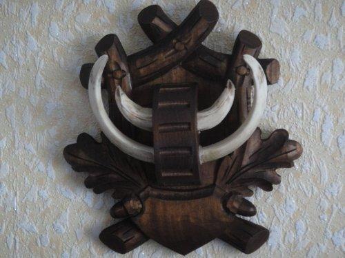 Трофей кабана