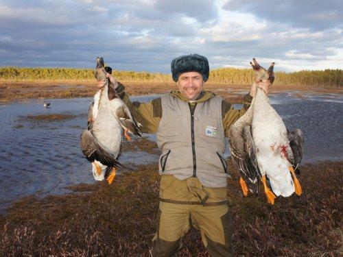 Изготовление натуральных чучел для охоты на гуся