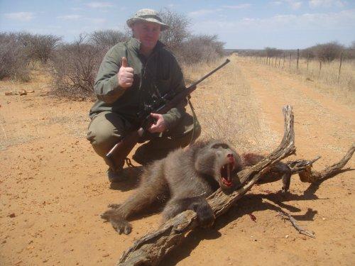 """Намибия. Бабуин, или """"мистер Бабун"""" на местном."""
