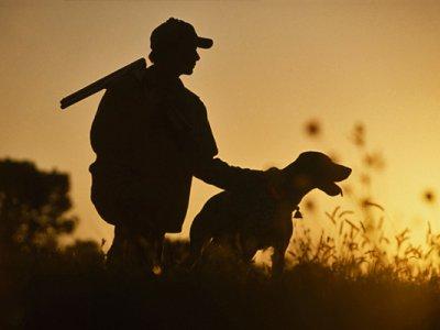 Стрельба влет: советы на открытие охоты