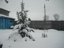 Сегодня 22 октября навалило по колено снега. Однако - эврика!