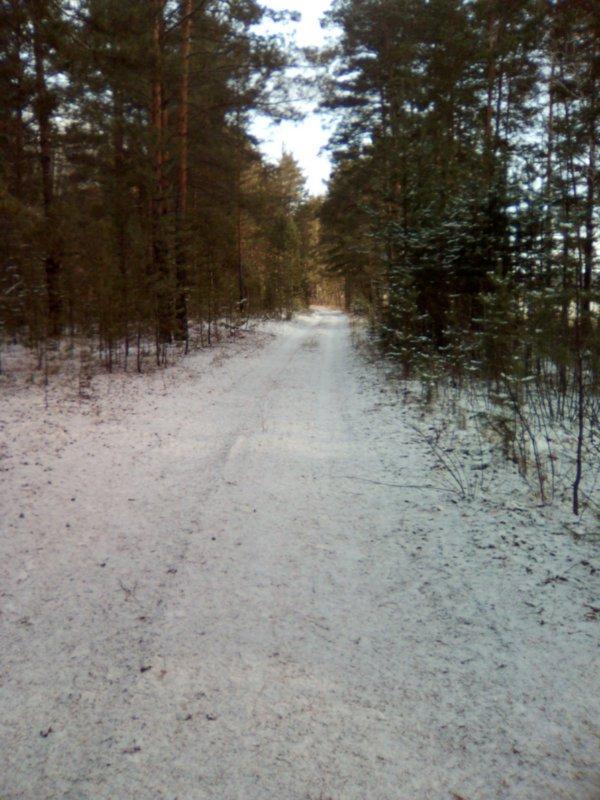 В бору немного снежка.