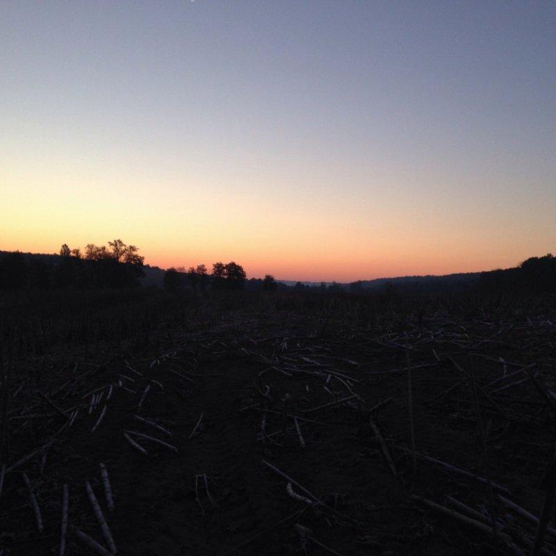 Перед восходом солнца.