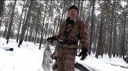 Охота на зайца c подхода по первому снегу - 2015