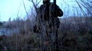 охота на утку в кукурузе