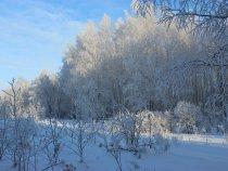 в мороз - красиво!