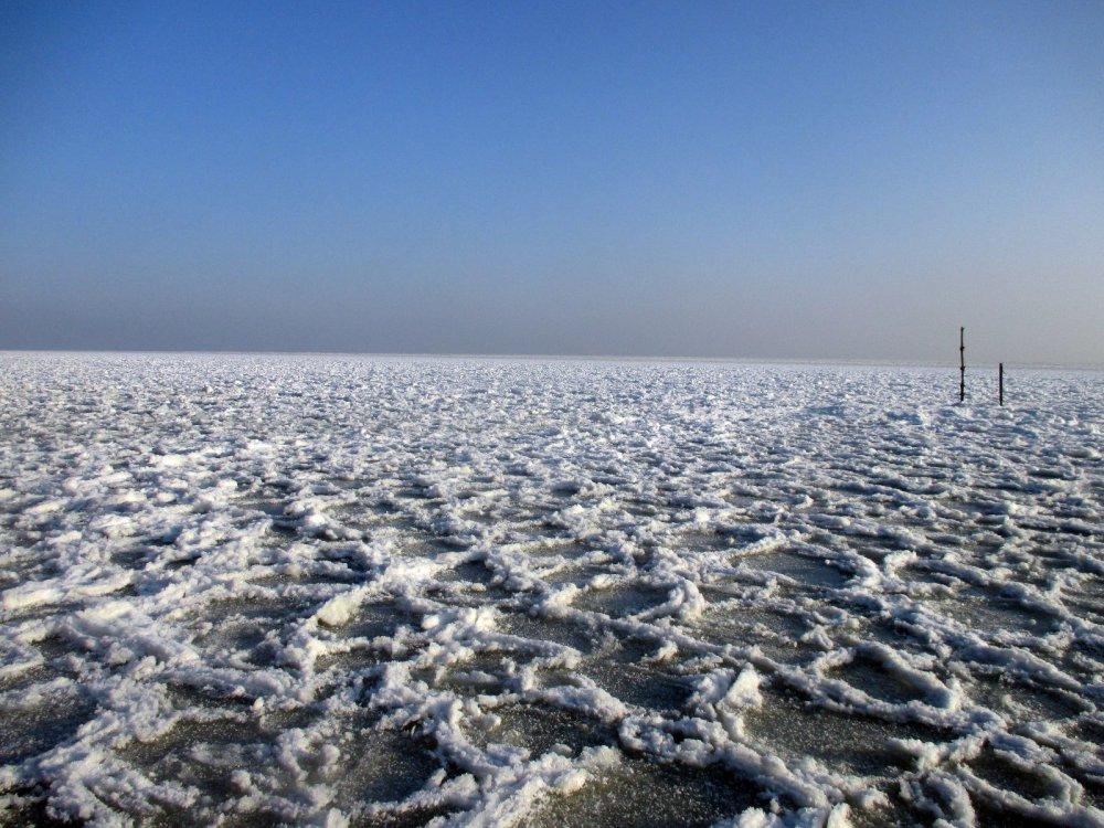 Куршский залив