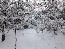 Добавило снежка.