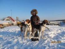 Внучок с собачками Корнева В.В.