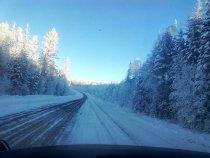 Тайга Усть-Кута ,январь2016  42 градуса.