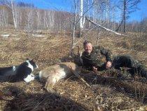 открытие охоты ,октябрь 2015