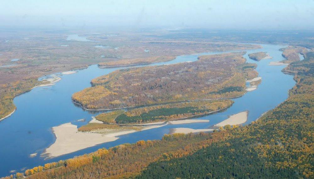 Остров Умревинский , река Обь