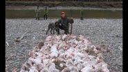 Как охотится на зайца в Якутии
