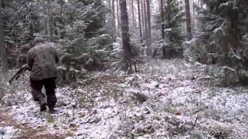 Досадный промах на охоте (slip on the hunt)